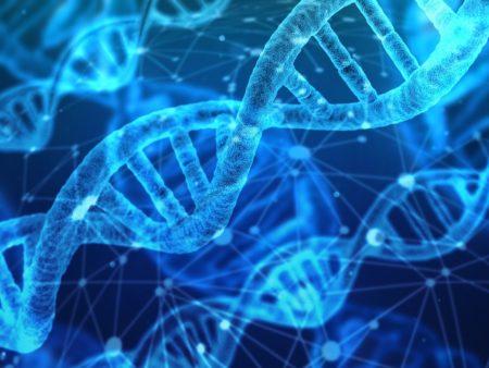 Nuevas vías de divulgación de la ciencia en la era digital